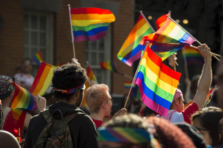 grupo de LGBTs com bandeiras