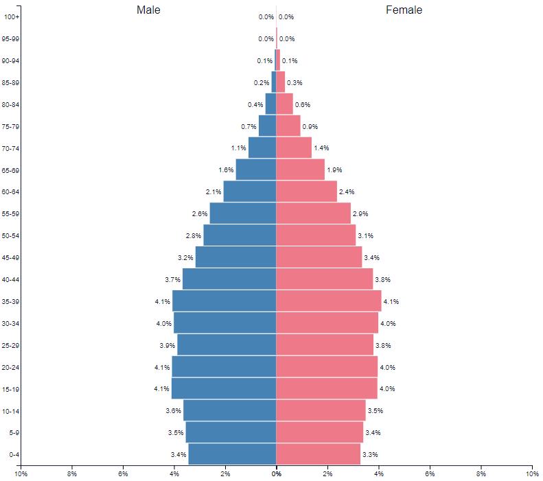 Pirâmide de faixa etária brasileira para 2020 inss
