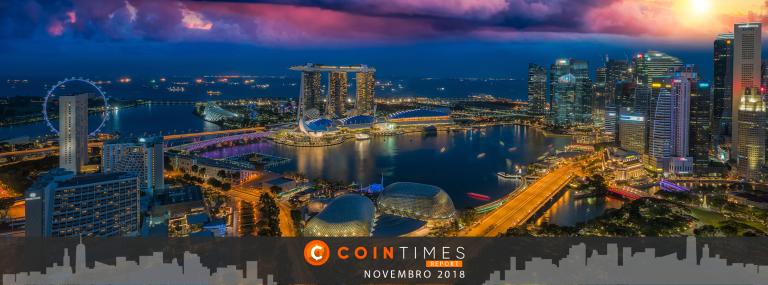 Cointimes Report – Relatório Mensal de Novembro