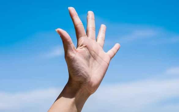 bitcoin 5 fatos mão cinco dedos