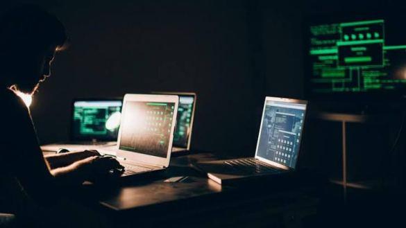 investigando criptomoedas