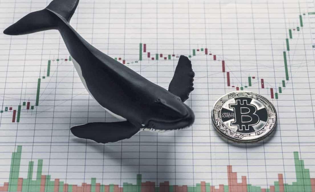 Dados de Exchange previam Dump de Bitcoin de Quinta