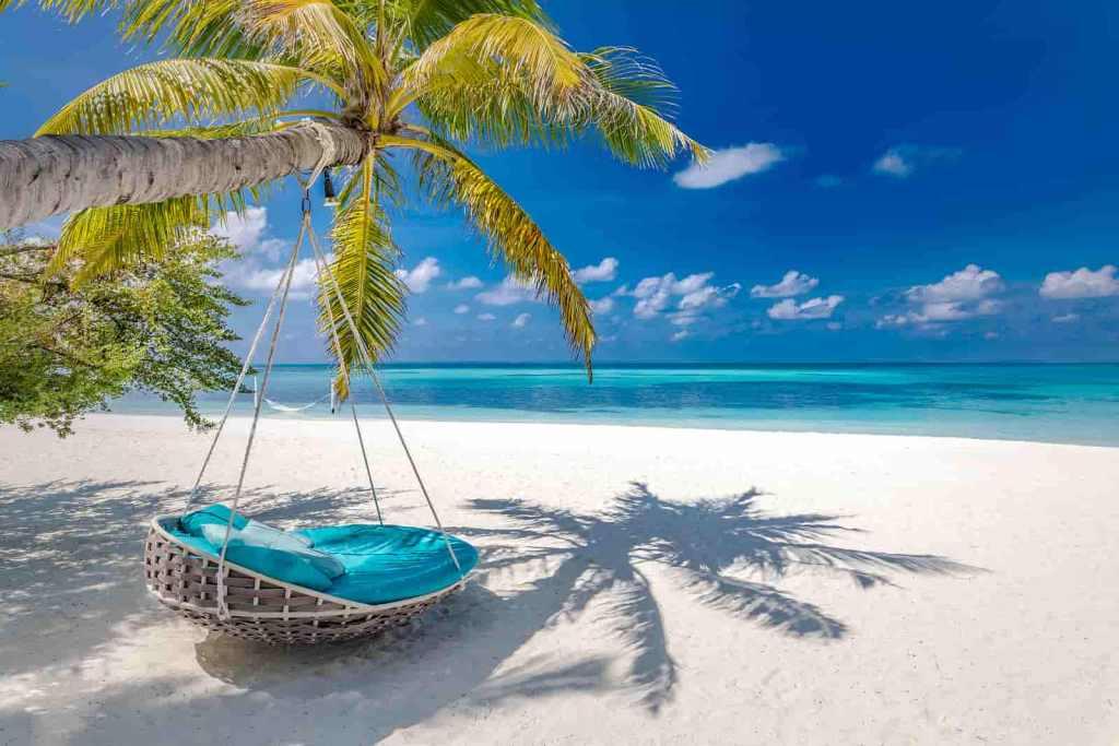 praia com rede pendurada em coqueiro