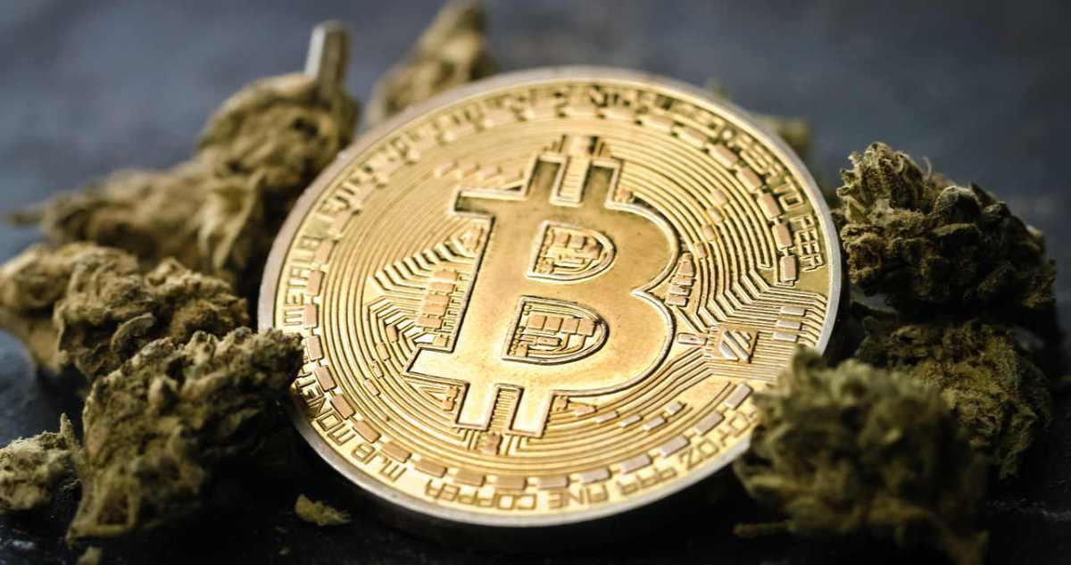 Grafico bitcoin dallinizio, Canali per le opzioni