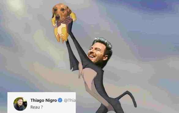 Primo Rico Vira-lata finance