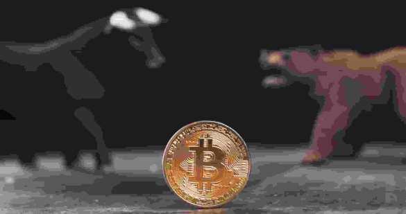 Touros e ursos do bitcoin