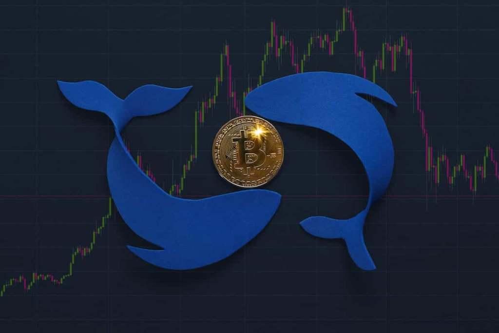 Baleias de bitcoin