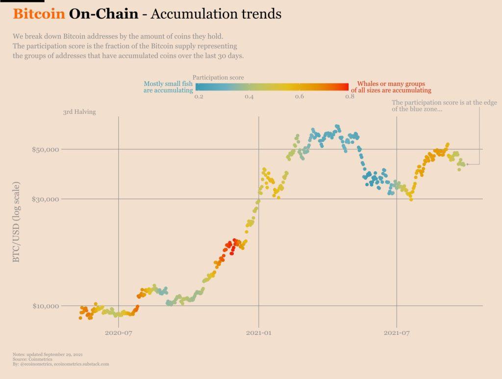Bitcoin on-chain: tendência de acumulação
