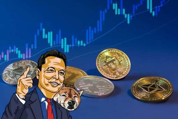 Bitcoin mas Shiba Inu